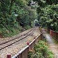 阿里山森鐵往紅南坑
