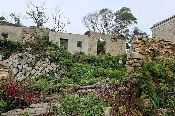 林義和古厝庭園景觀