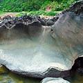 光滑平坦的蚌殼石