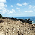 被土石掩埋的佳樂水海岸
