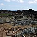 海岸地殼變動顯露岩層