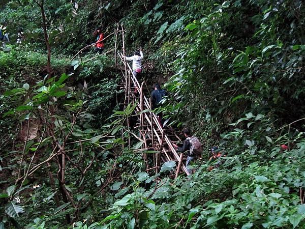 臨時搭建的竹梯棧道