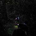 漆黑籠罩山徑