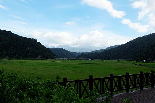 南安遊客中心前稻田風景