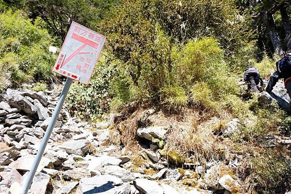亂石堆中的路標