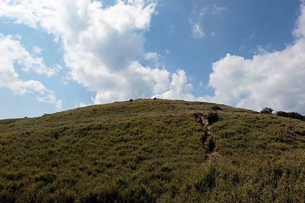 攻頂合歡西峰的最後上坡