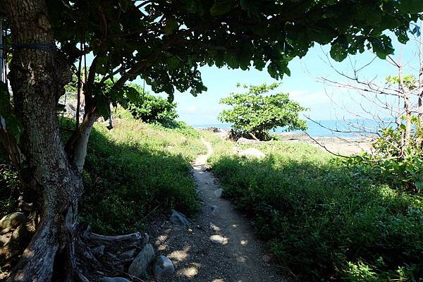 小徑通往海邊