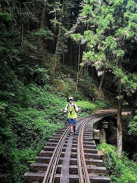 阿里山森鐵尋蹤示意圖