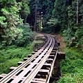 阿里山鐵路橋梁
