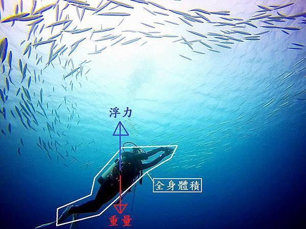 潛水中的浮力