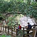 木棧道橫越苦苓溪谷