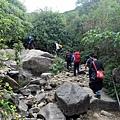 里龍山竹坑登山步道一景