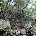 山林河床巨石風景