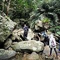 跨越苦苓溪上游河床巨石
