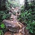 雨中攻頂之路