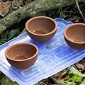 山林秘境中的茶香甘霖,已乾杯