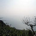 少女峰往南邊海岸展望