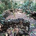 山徑入口2返回長春橋途中遇一營地遺跡