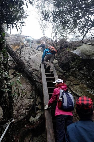 垂直爬梯繼續向上