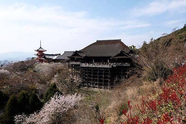 眺望清水寺