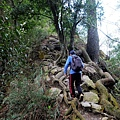 唐麻丹山登山步道