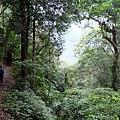 唐麻丹山步道