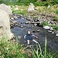 跳入枋山溪中清涼消暑