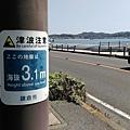 超過海拔3.1m會被海嘯淹沒