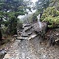 登頂玉山主峰方向