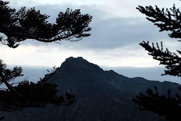 樹林間的玉山主峰