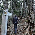 玉山西峰步道2.1km