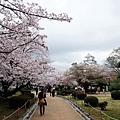 西之丸庭園風景
