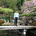 「御屋敷の庭」留影
