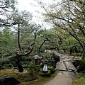 「松の庭」
