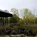 「竹の庭」