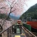 嵯峨野觀光鐵道月台風光