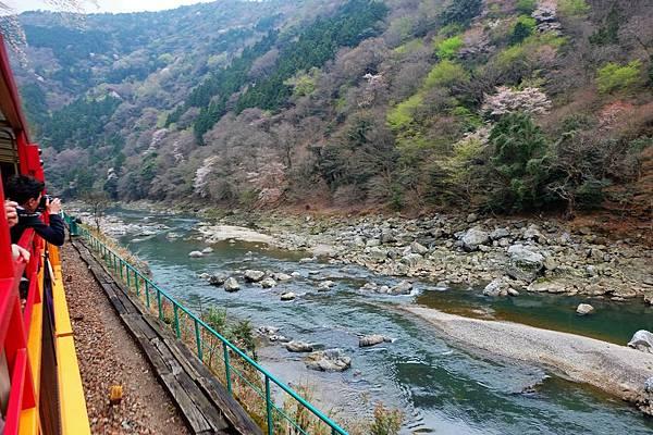 嵯峨野觀光鐵道風光