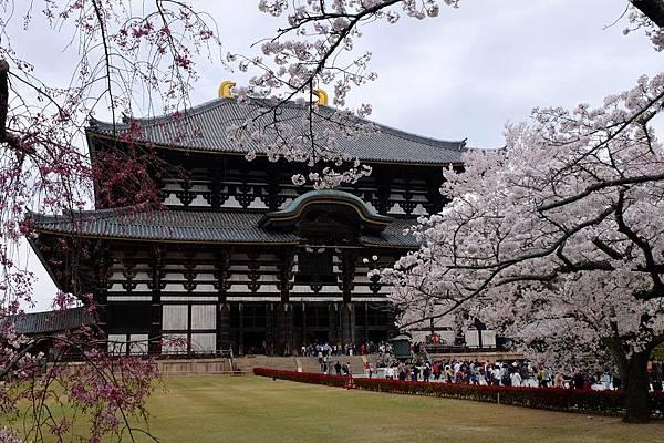 奈良漫遊東大寺