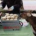 販賣鹿仙貝的路邊攤