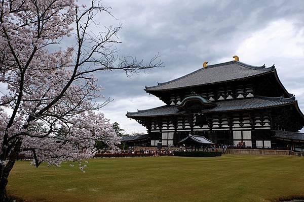 不同角度的東大寺大佛殿