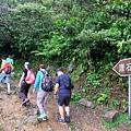 前往鷹石尖登山口
