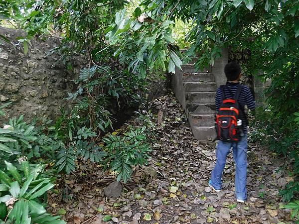 上遺跡階梯