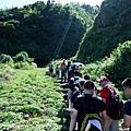 龜山島山登山口