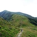 綠色稜線步道之美