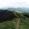 草嶺線桃源谷步道山草連遍風景