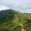 稜線山坡綠草如茵