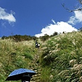 陡坡石階山路衝上大屯主峰