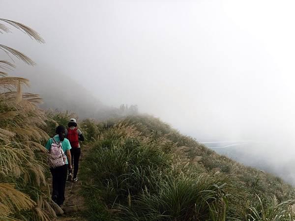 陷入雲霧茫茫
