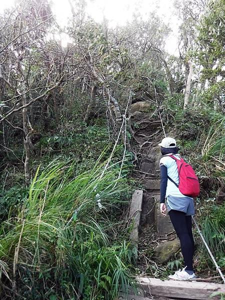獅崖陡峭一景