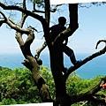 相思台山水風景